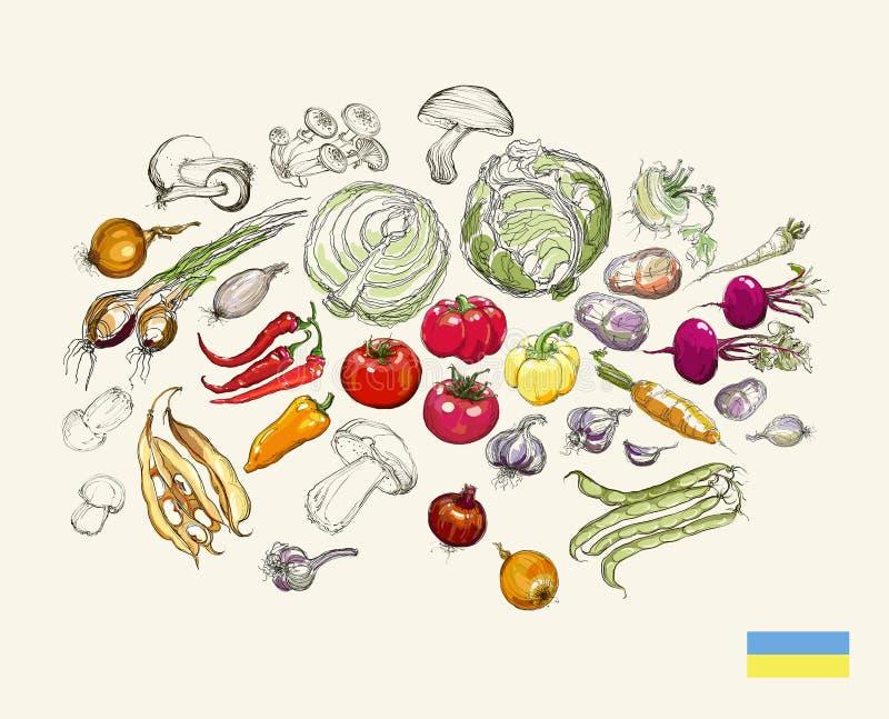 De realistische vectorreeks van de handtekening groenten stock foto's