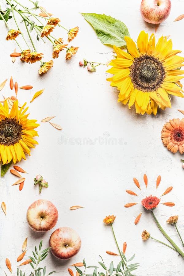 De recente zomer of de herfst de achtergrond met zonnebloemen, appelen en andere tuin bloeit op wit bureau Hoogste mening Vlak le royalty-vrije stock afbeeldingen