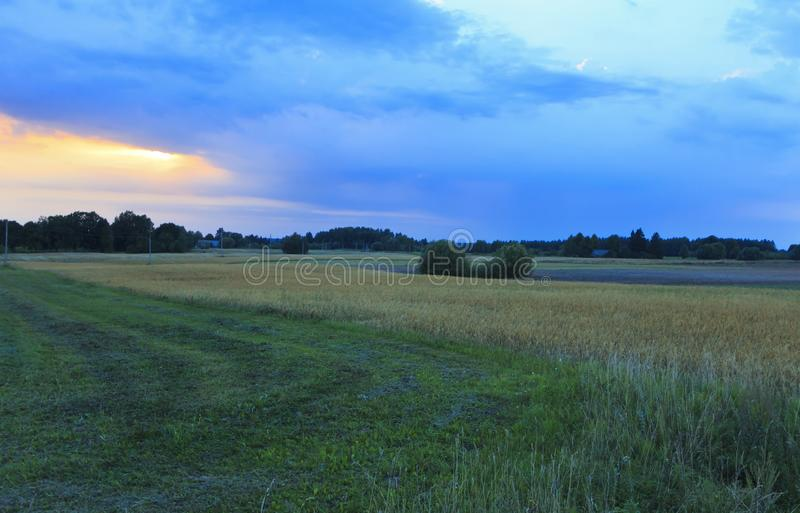 De de recente zomeravond, de herfst komt stock fotografie