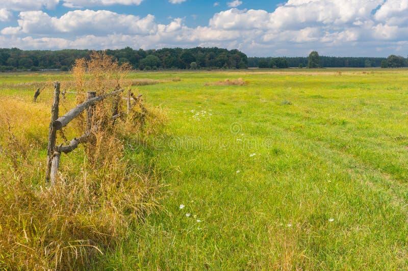 De recente zomerlandschap op plattelandsgebied royalty-vrije stock afbeelding