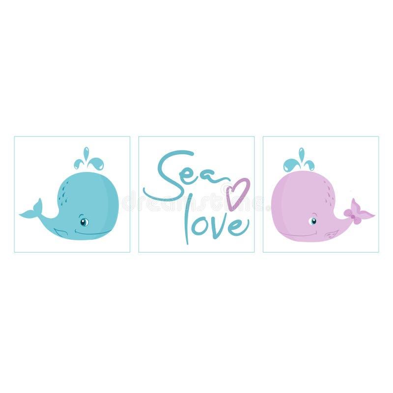 De reeks kinderdagverblijfaffiches, Kleine Blauwe en Roze Walvissen, het overzeese liefde van letters voorzien, geslacht openbaar vector illustratie