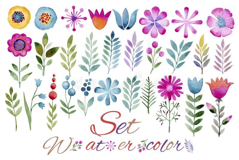 De reeks sierplanten, bloemen, bladeren, vruchten en bessen maakte in waterverf royalty-vrije illustratie