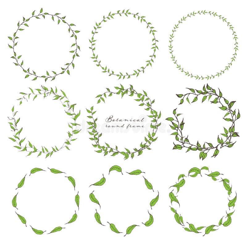 De reeks van botanisch rond kader, getrokken Hand bloeit, Botanische samenstelling, Decoratief element voor Uitnodigingenkaart stock illustratie