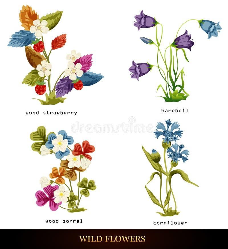 De reeks van de bloem vector illustratie