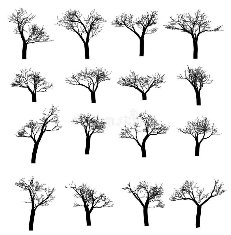 De reeks van de de winterboom Droog met gevallen bladeren Dood silhouet Vector illustratie royalty-vrije illustratie