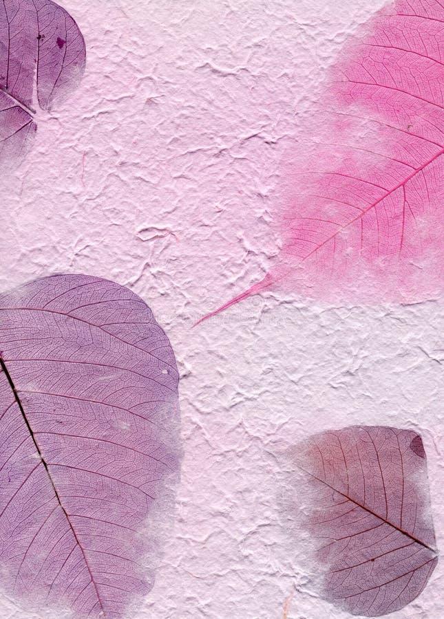 De Reeks van de textuur - Purper Document met Bladeren royalty-vrije stock fotografie