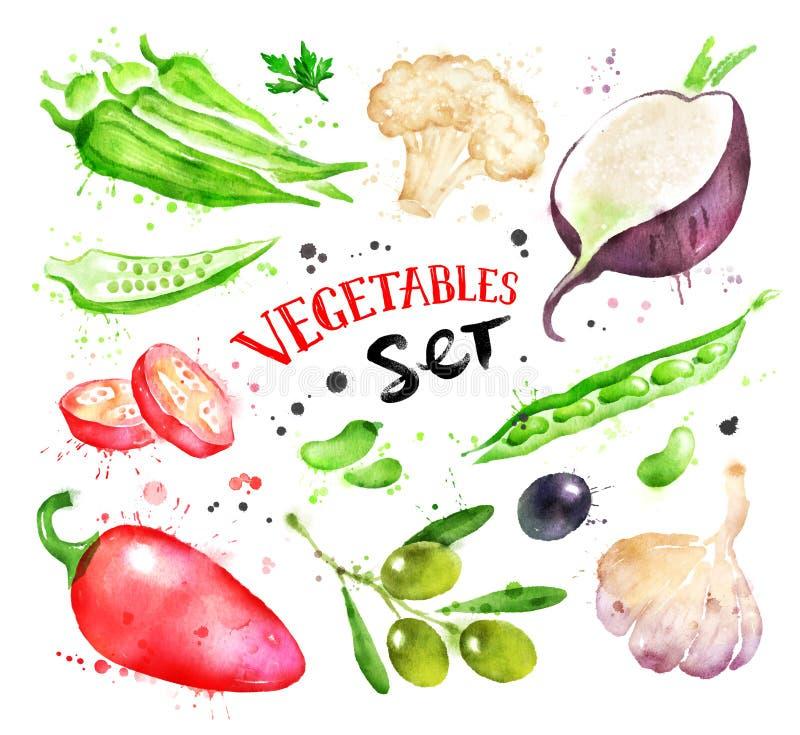 De reeks van de waterverfillustratie groenten stock illustratie