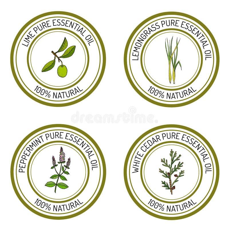 De reeks van etherische olie etiketteert kalk, citroengras, pepermunt, witte ceder vector illustratie