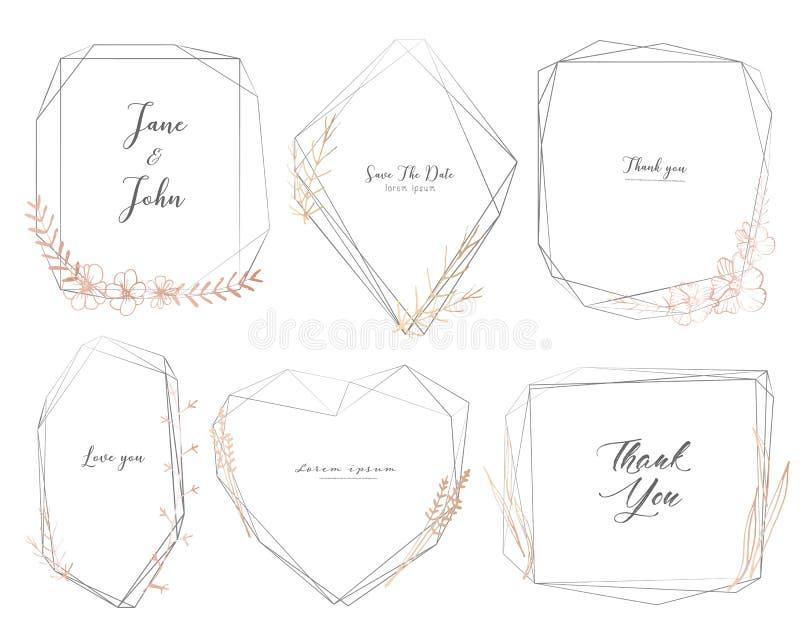 De reeks van geometrisch kader, getrokken Hand bloeit, Botanische samenstelling, Decoratief element voor huwelijkskaart, Uitnodig stock illustratie