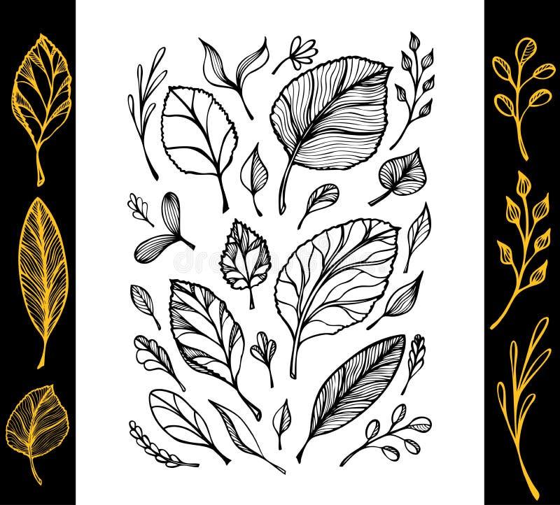 De reeks van hand trekt structuur van bladerenzwarte op wit in lijnart. royalty-vrije illustratie
