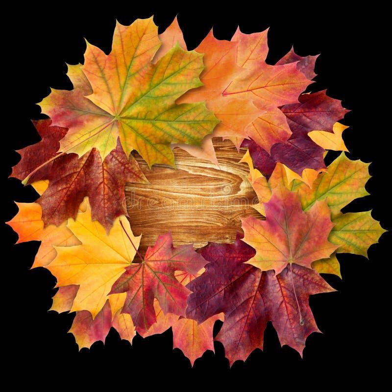 De reeks van het de herfstontwerp van affiches en achtergrond De achtergrond van de herfst Rode en oranje het bladclose-up van de stock fotografie