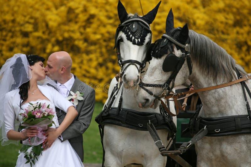 De reeks van het huwelijk, vervoer royalty-vrije stock foto