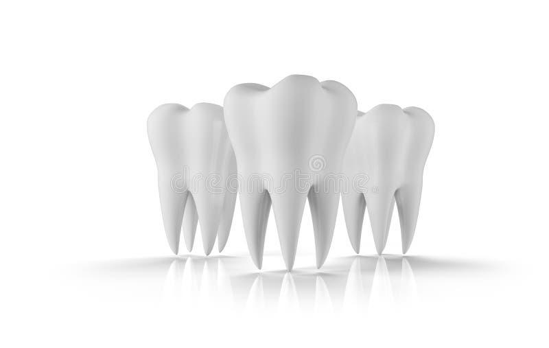 De reeks van het tandpictogram Gezonde tanden 3d illustratie met witte email en wortel Tandheelkunde, tandgezondheidszorg royalty-vrije illustratie