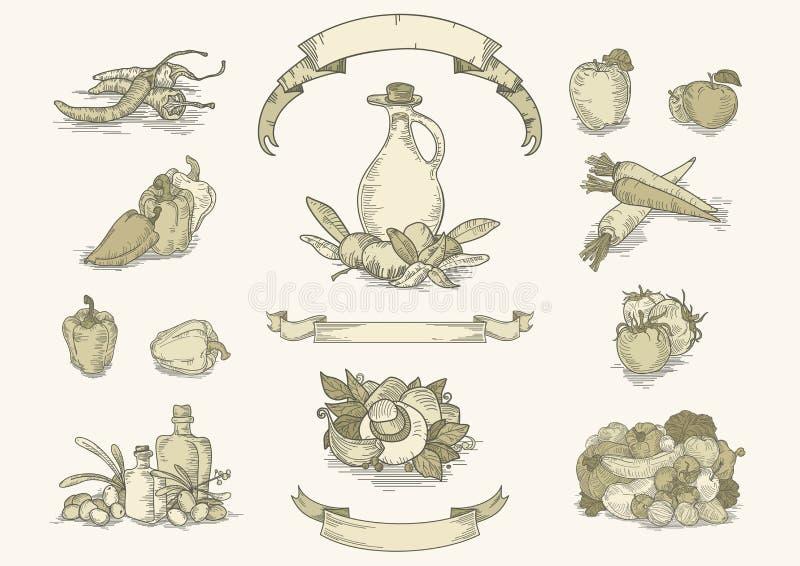 De reeks van het uitstekende voedselingrediënt vector illustratie