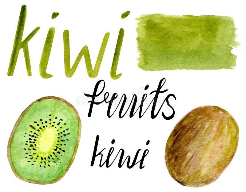 De reeks van het waterverffruit Kiwiplak, hand het getrokken van letters voorzien en kalligrafie met achtergrondborstelvlek geïso stock illustratie