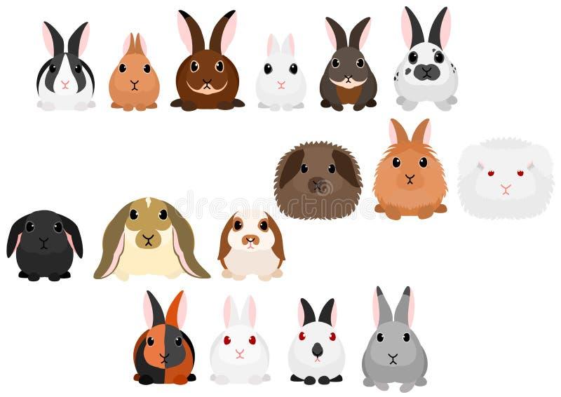 De reeks van de konijnengrens royalty-vrije illustratie