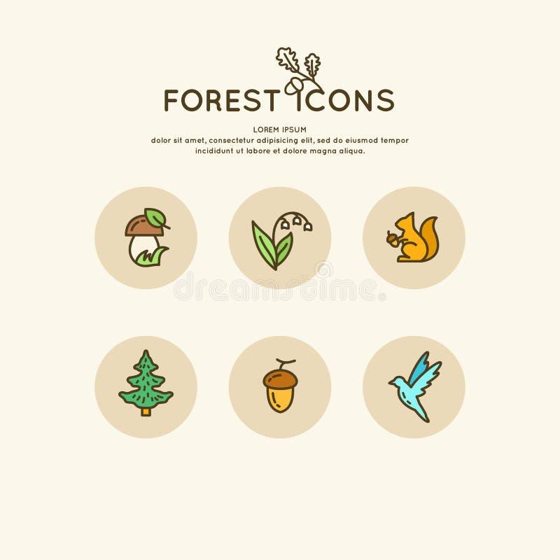 De reeks van lineair bos van pictogrammen en illustraties Dieren en planten stock illustratie