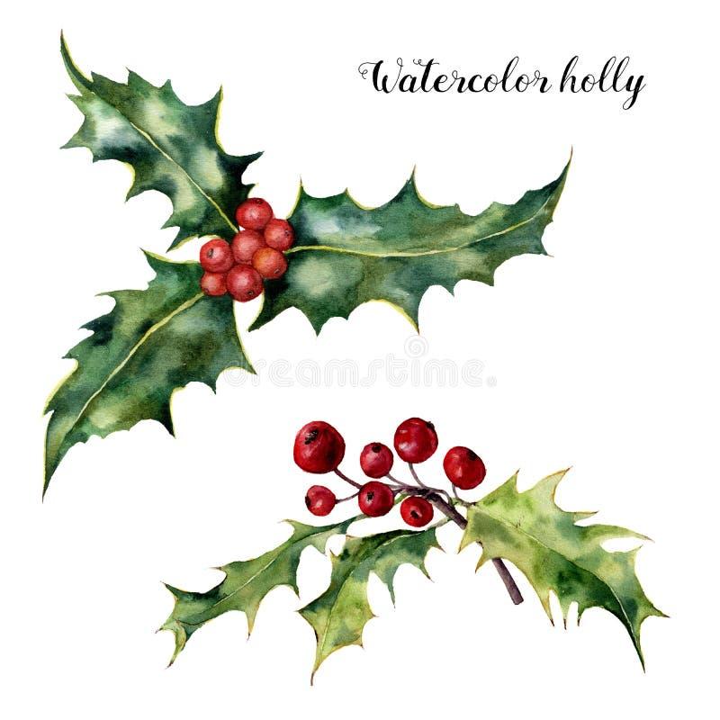 De reeks van de waterverfhulst Hand geschilderde hulsttak met rode die bes op witte achtergrond wordt geïsoleerd Kerstmis botanis vector illustratie