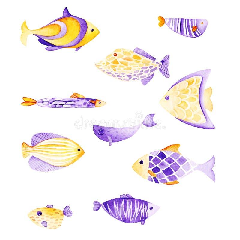 De reeks van waterverfvissen Ultraviolet en gouden kleuren Voor kinderenontwerp, druk of achtergrond stock illustratie
