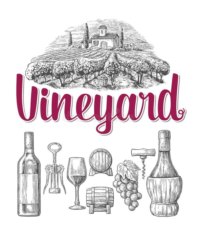 De reeks van de wijn Fles, glas, kurketrekker, vat, wijngaard Zwarte wijnoogst vector illustratie