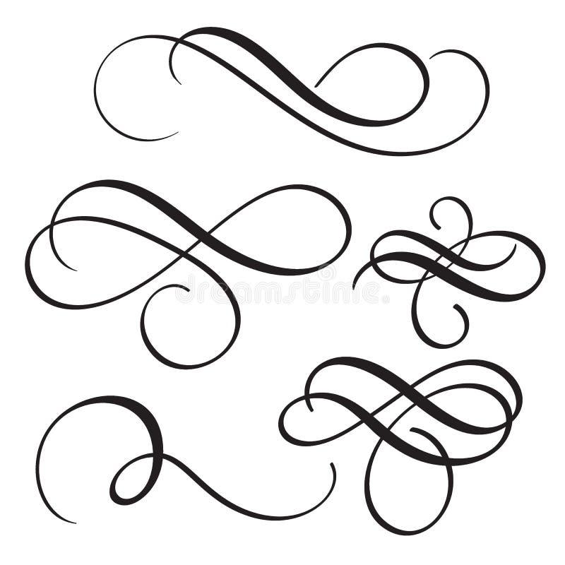 De reeks van wijnoogst bloeit decoratieve whorls van de kunstkalligrafie voor tekst Vector illustratie EPS10