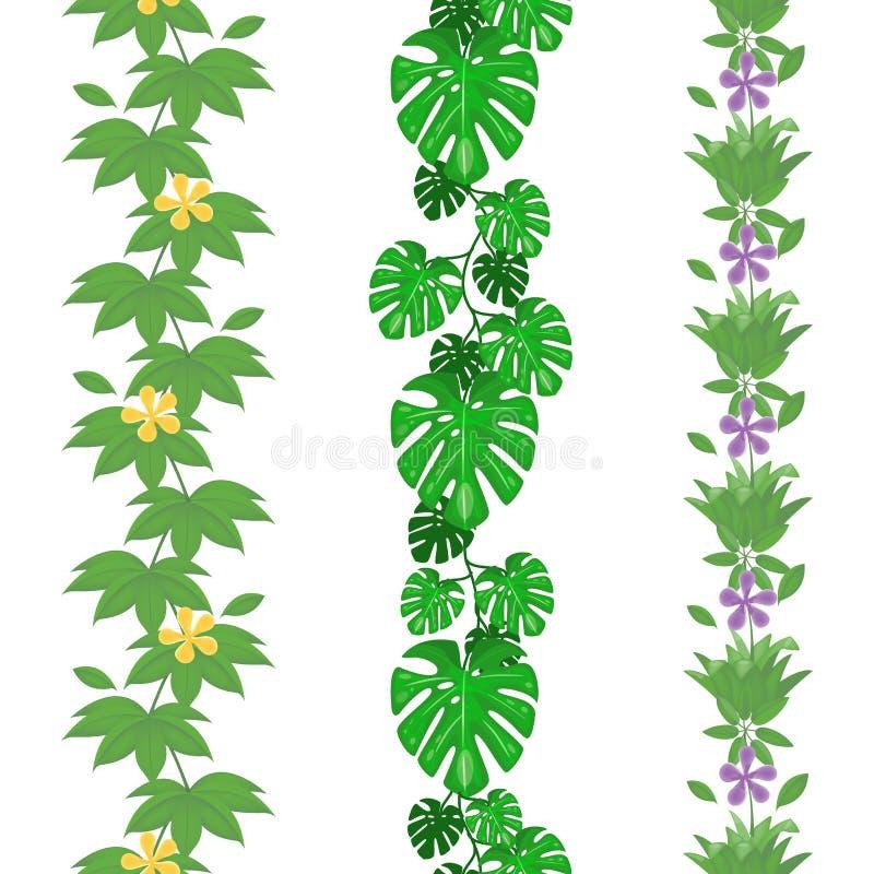 De reeks van wildernis verlaat naadloze grenzen Het tropische patroon van het de zomergebladerte Regenwoud botanisch concept Vect stock illustratie