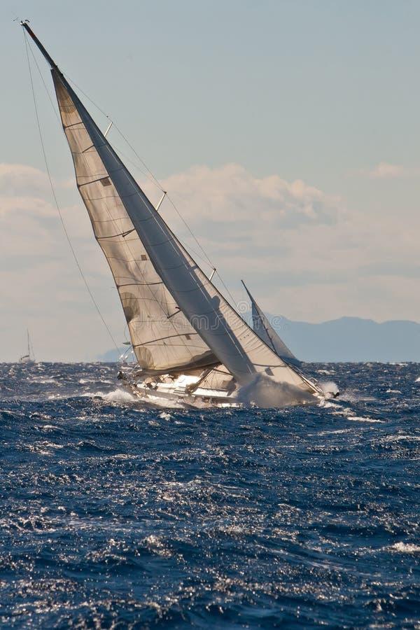 De regatta van het jacht royalty-vrije stock afbeeldingen