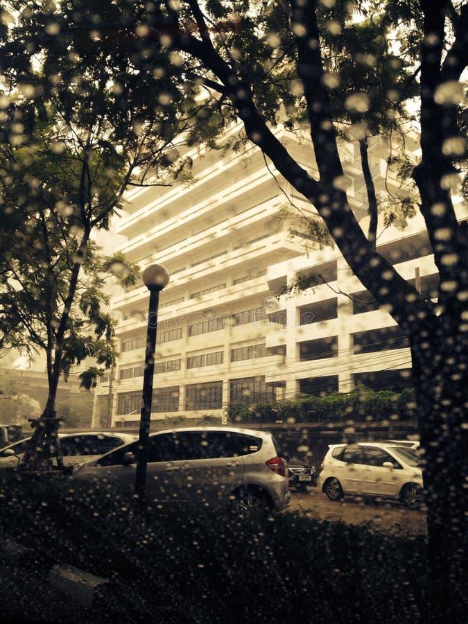 De Regen stock fotografie