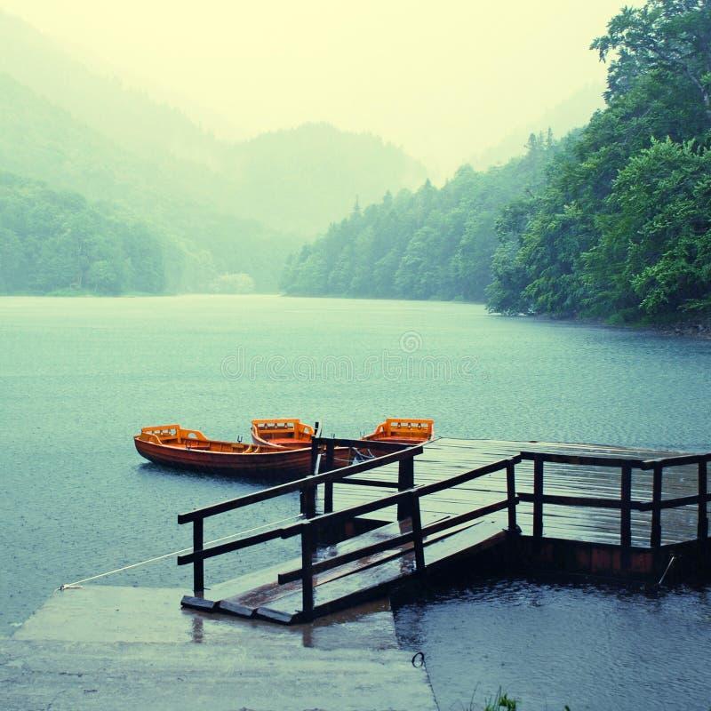 De regen op het meer, regelt gestemd beeld stock afbeelding