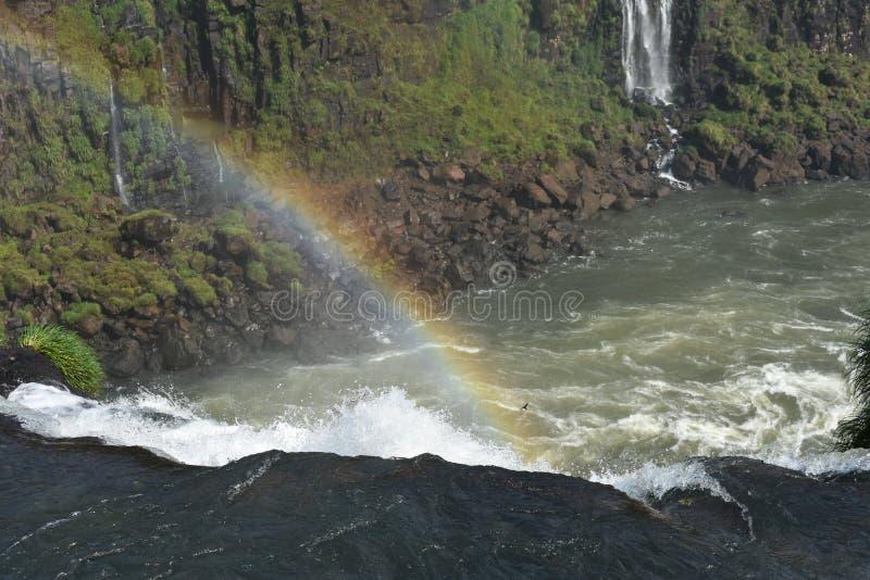 De Regenboog van de Dalingen van Iguazu royalty-vrije stock foto