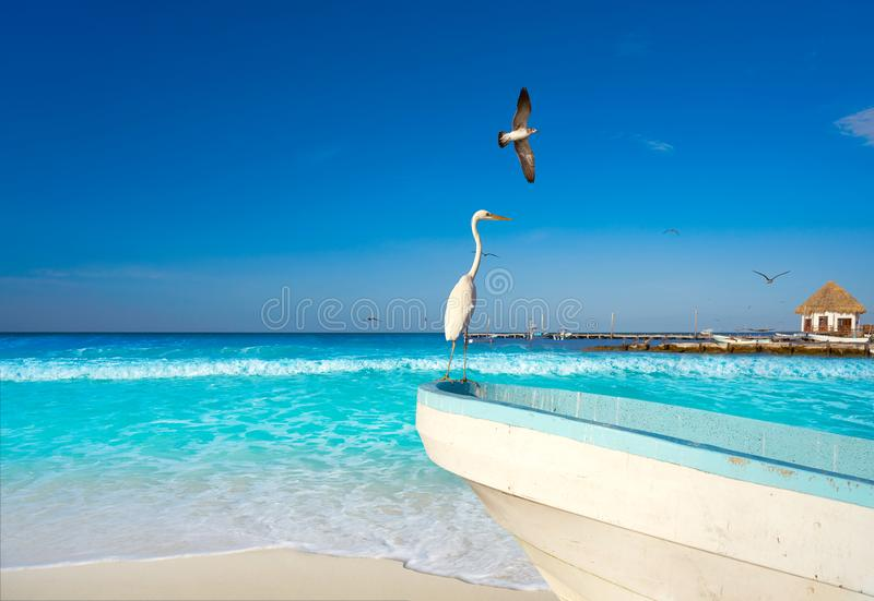 De reigervogel en boot van het Holboxeiland in een strand royalty-vrije stock afbeeldingen