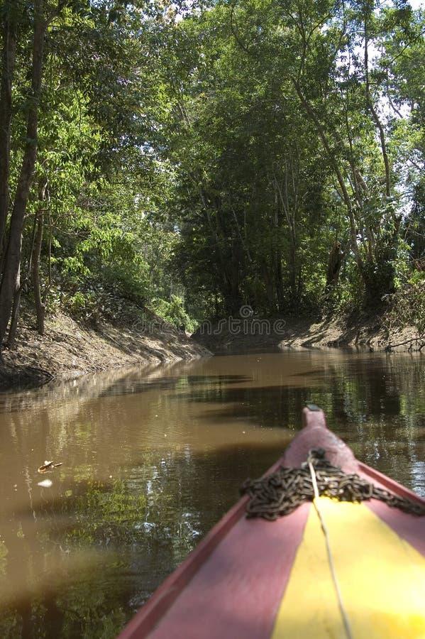 De reis van de rivier stock foto