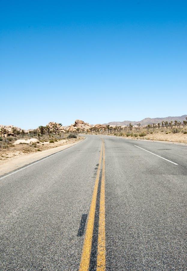 De reis van de weg aan Boom Joshua stock afbeelding