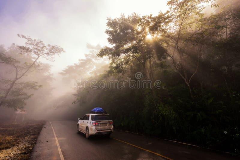 De reis van de familieweg door SUV-auto stock afbeeldingen