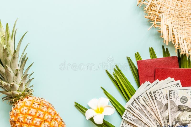 De reisvlakte legt punten: vers ananas, bloem, contant geldgeld, paspoort, strandpantoffels en palmblad Plaats voor tekst Hoogste royalty-vrije stock afbeeldingen