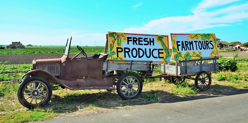 De Reizen van het vers productlandbouwbedrijf stock afbeelding