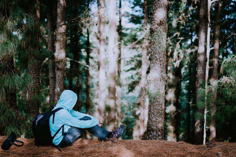 De reiziger neemt een rust tijdens stijging in het geheimzinnige bos van de pijnboomboom en endjoyed de stilte Santo Antao-eiland royalty-vrije stock afbeeldingen
