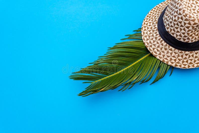 De reizigerstoebehoren, tropisch palmblad vertakken zich op blauwe achtergrond met lege ruimte voor tekst Het concept van de reis royalty-vrije stock fotografie