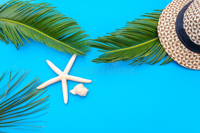 De reizigerstoebehoren, tropisch palmblad vertakken zich op blauwe achtergrond met lege ruimte voor tekst Het concept van de reis stock fotografie