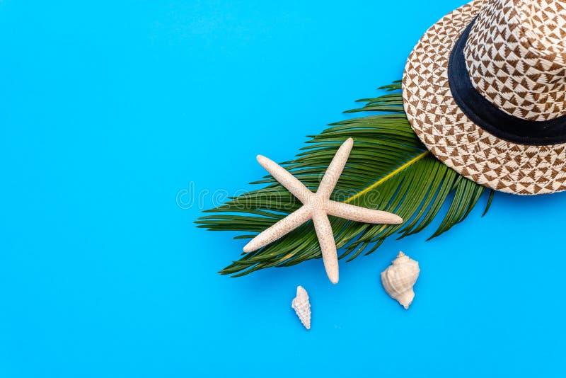 De reizigerstoebehoren, tropisch palmblad vertakken zich op blauwe achtergrond met lege ruimte voor tekst Het concept van de reis stock foto's