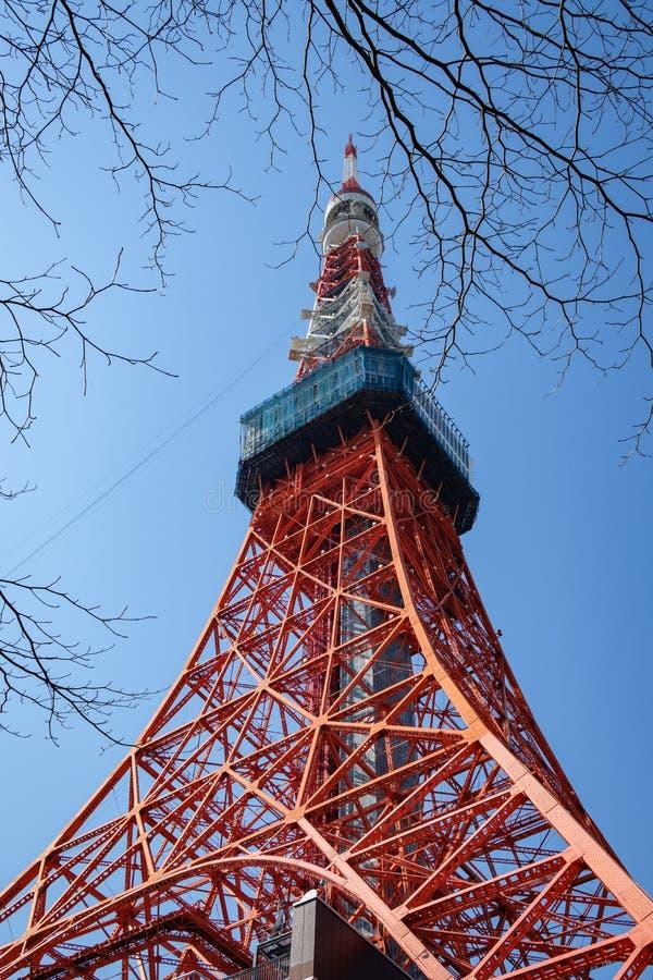 De replica van de toreneiffel van Tokyo door brunches en lage hoek bij dag wordt ontworpen die stock foto's