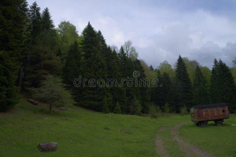 De reserve van de Kaukasus stock foto