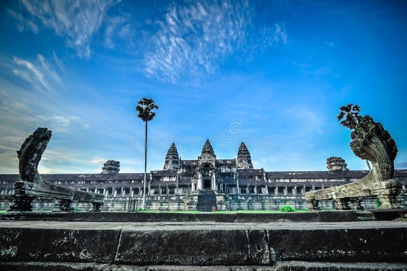 De reuzeboom die Ta Prom en de tempel van Angkor Wat, Siem behandelen oogst, Ca stock foto