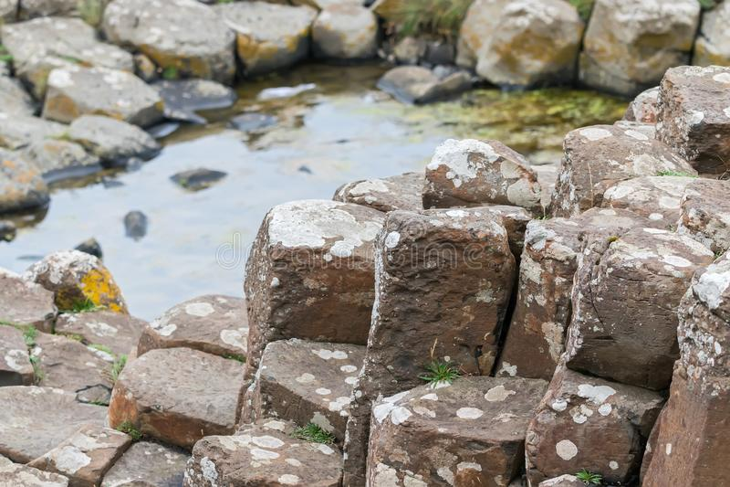 De Reuzenverhoogde weg in Ierland royalty-vrije stock fotografie