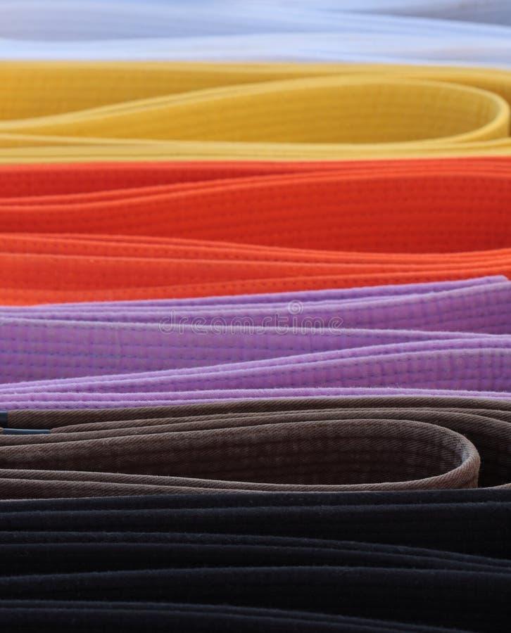 De riemensamenvatting van de karate stock afbeelding