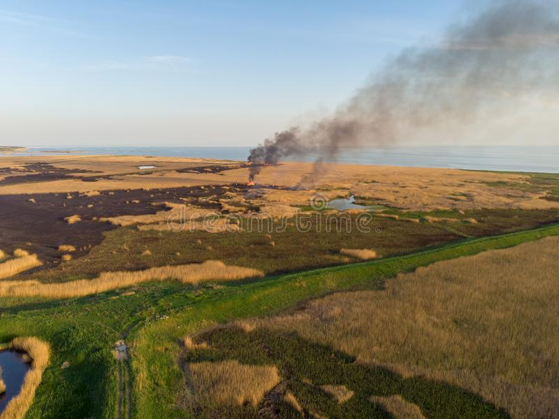 De rietgebieden op de kust branden Mening van de hoogte stock foto
