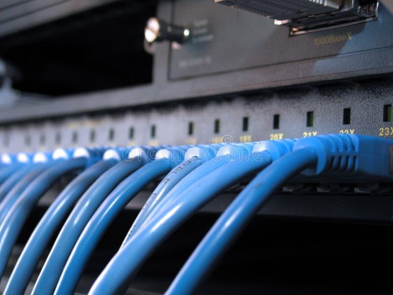 De Rij van de Kabels van het netwerk royalty-vrije stock afbeelding