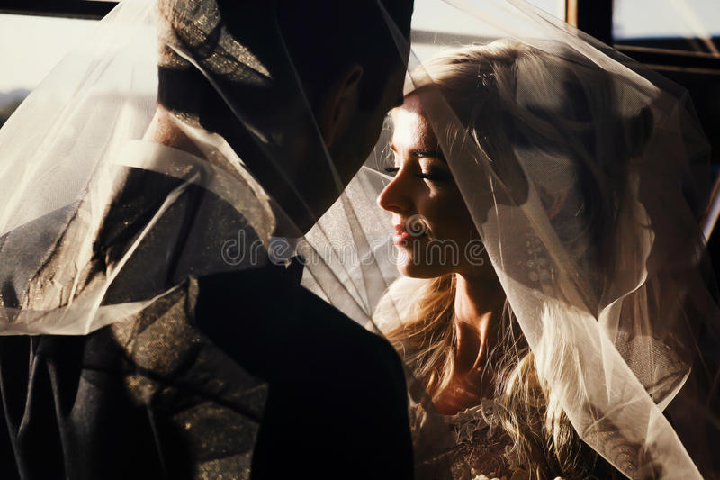 De rijken verzorgen en het van achtergrond bruidhuggingoutdoor muurgras verwarmt a royalty-vrije stock fotografie