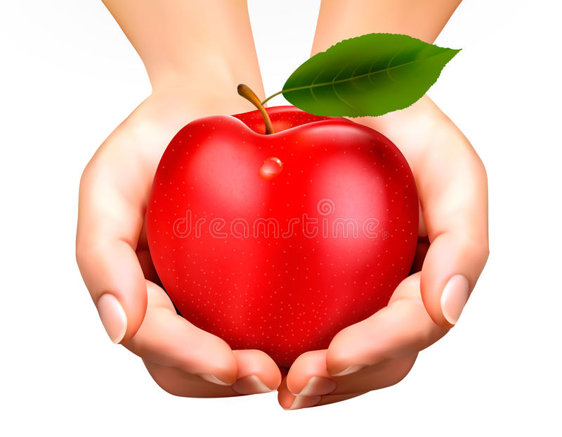 De rijpe appel van ED in handen. Concept dieet. royalty-vrije illustratie