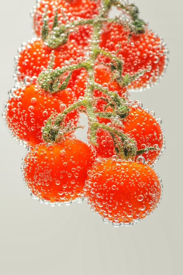De rijpe Rode Tomaten van de Kers royalty-vrije stock foto
